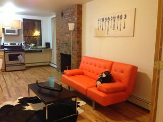 Modern East Village 3 Bedroom - New York City vacation rentals