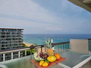 Nice Condo with Internet Access and A/C - Lahaina vacation rentals