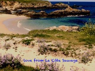 charmant duplex presqu'île de Quiberon - Arzon vacation rentals