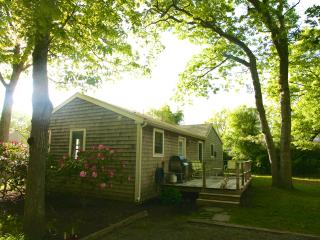 Cozy Cottage - Easy Walk to Town and Beach - Amagansett vacation rentals