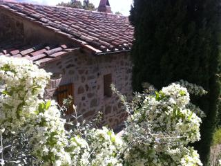 Charming Cottage with Deck and Internet Access - Scansano vacation rentals