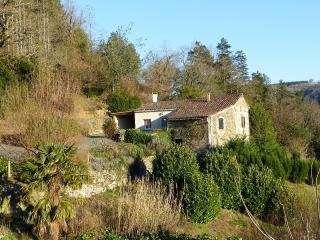 La Vergne de Bouyrols - Tarn vacation rentals