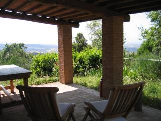 Charming 2 bedroom Cottage in Scansano - Scansano vacation rentals