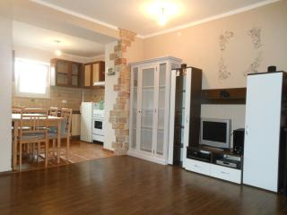ST1 Two-Bedroom Apartment with Terrace - Basanija vacation rentals