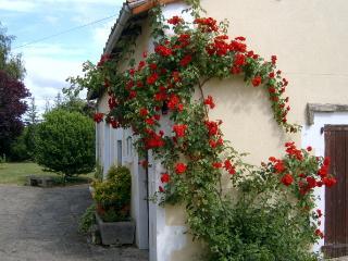 Lovely 2 bedroom Gite in Sauze-Vaussais with Internet Access - Sauze-Vaussais vacation rentals