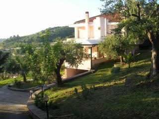 Villa immersa tra gli ulivi - Agropoli vacation rentals