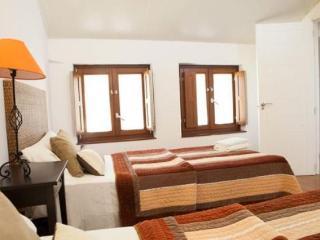 Apartamentos Huertas (646) - Madrid Area vacation rentals