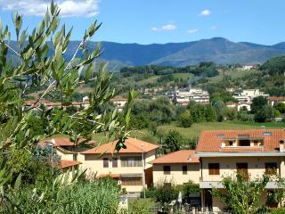 San Giovanni Valdarno - 59732001 - San Giovanni Valdarno vacation rentals