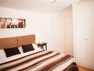 Apartamentos Huertas (639) - Madrid vacation rentals