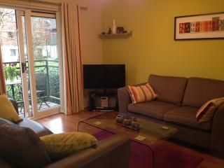 4* Self Catering Apt Lisburn Road - Belfast vacation rentals