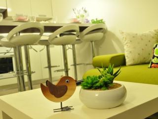 Luxury apartments Bonaria - Bura (4+1) - Okrug Gornji vacation rentals