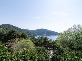 Sunny apartment on Mljet island 1 - Saplunara vacation rentals