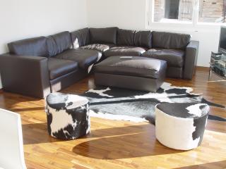 Comfortable 3 bedroom Mürren Condo with Internet Access - Mürren vacation rentals