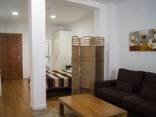 Apartamentos Huertas (635) - Madrid vacation rentals