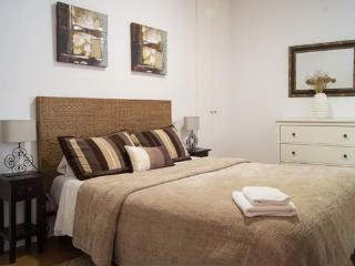 Apartamentos Huertas (636) - Madrid vacation rentals