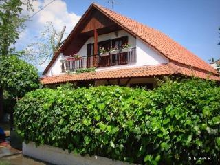 Beautiful 3 bedroom Villa in Nea Vrasna with Internet Access - Nea Vrasna vacation rentals