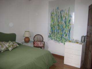 Pretty studio/Iris in historic Villa with garden - Ravello vacation rentals