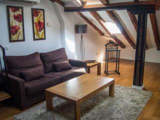 Apartamentos Huertas (648) - Madrid vacation rentals