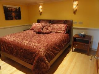 Elegance and Coziness in Broadview - Seattle vacation rentals