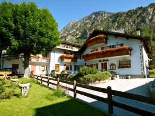 Nice Condo with Internet Access and Garden - Bormio vacation rentals