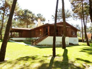 Villa Primavera - Charneca da Caparica vacation rentals