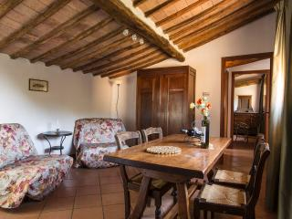 GRANAINO - Siena vacation rentals