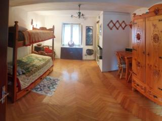 1 bedroom Apartment with Internet Access in Arignano - Arignano vacation rentals