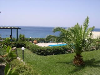 Chryssa Preveli - Lefkogia vacation rentals