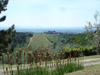 Nice House with Internet Access and Satellite Or Cable TV - Castellina In Chianti vacation rentals
