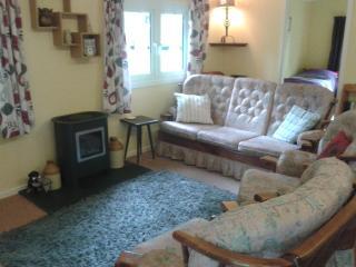 Torwood 2 Family Woodland Retreat Lodge, Cenarth - Cenarth vacation rentals