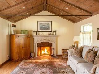 Pura Vida - Carmel vacation rentals