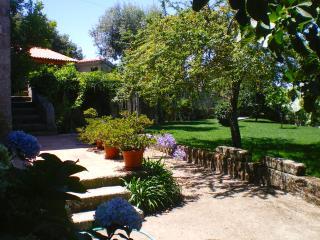 Casa das Vendas - Marco de Canaveses vacation rentals