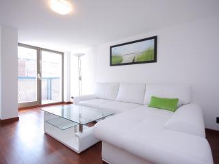Perfect Luxury Loft - Prague vacation rentals