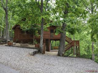 Kayels Mountain Retreat- Is the perfect place to enjoy your family vacation! - Blairsville vacation rentals