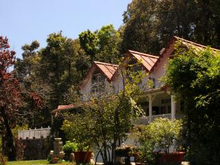 The Cottage by the Woods, Vienna Lodge - Nainital vacation rentals