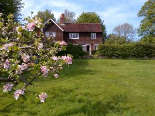 Cottage near Ditchling, Lewes & South Downs Way - Ditchling vacation rentals