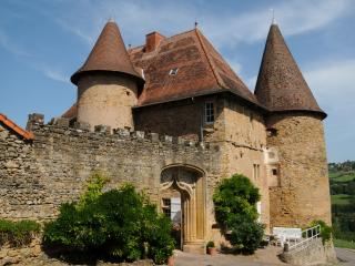Cozy 3 bedroom Autun Chateau with Internet Access - Autun vacation rentals
