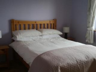 Curra Cottage  B & B double room with en suite - Loughrea vacation rentals