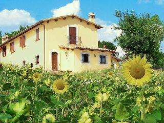 Charming 1 bedroom Farmhouse Barn in San Gemini - San Gemini vacation rentals