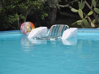 Villa Pia with pool-12+11 pax Recco Cinque Terre - Recco vacation rentals