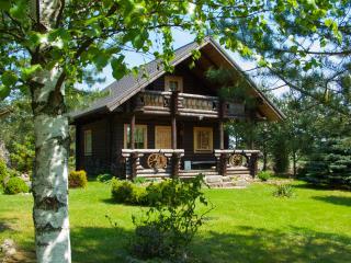 1 bedroom House with Internet Access in Zarasai - Zarasai vacation rentals