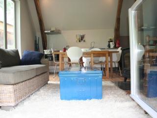 Chez Olivia - Bagneres-de-Bigorre vacation rentals