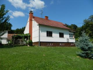 2 bedroom House with Internet Access in Strigova - Strigova vacation rentals
