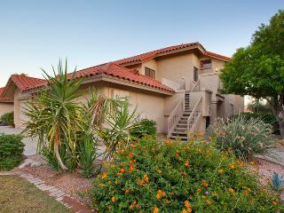 SC206 - Cozy Cactus Sanctuary - Scottsdale vacation rentals