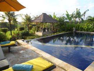 Villa Mawar Berawa in the middle of rice fields - Canggu vacation rentals