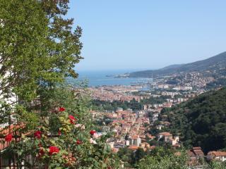 Vista stupenda sul Golfo dei Poeti - La Spezia vacation rentals