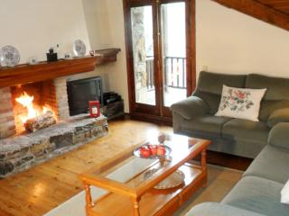 Rustic flat with fireplace and mountain views - El Tarter vacation rentals