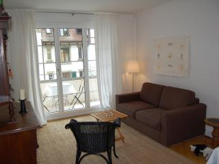 Maison Mosgenstein elegant central comfy quiet - Bern vacation rentals