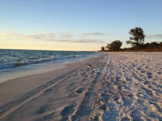 1.2 miles to white sands of Vanderbilt Beach! - Naples vacation rentals
