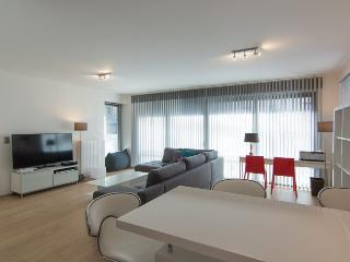 Loft 2 bedrooms - Brussels centre - with Parking - Brussels vacation rentals